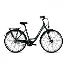 Raleigh Unico DLX Wave 28 Zoll, Alu, Shimano Nexus, 8-Gang