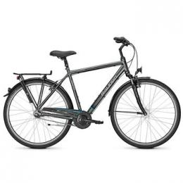 Raleigh Unico Plus HE 28 Zoll, Alu, Nexus, 7-Gang